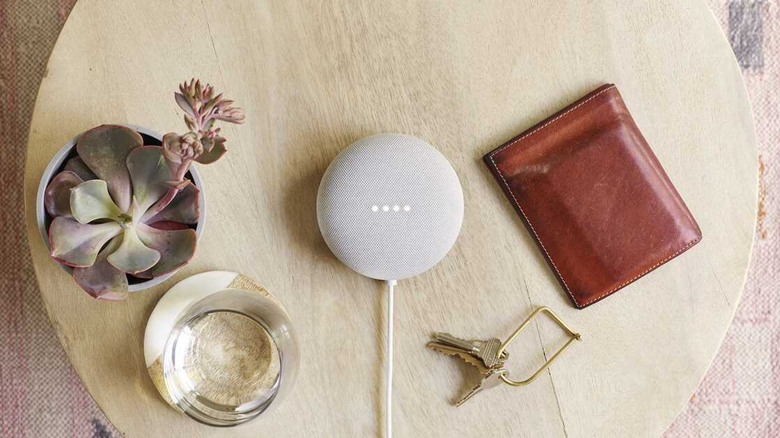 The Google Nest Mini on a table next to keys, a wallet, glass of water and a plant.