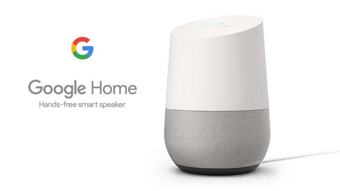 google home smart speaker home assistants. Black Bedroom Furniture Sets. Home Design Ideas