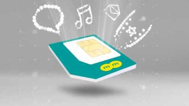2GB Data SIM