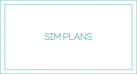 SIM Plan copy in image