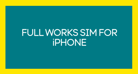 'The Full Works plan for SIM' copy in an image